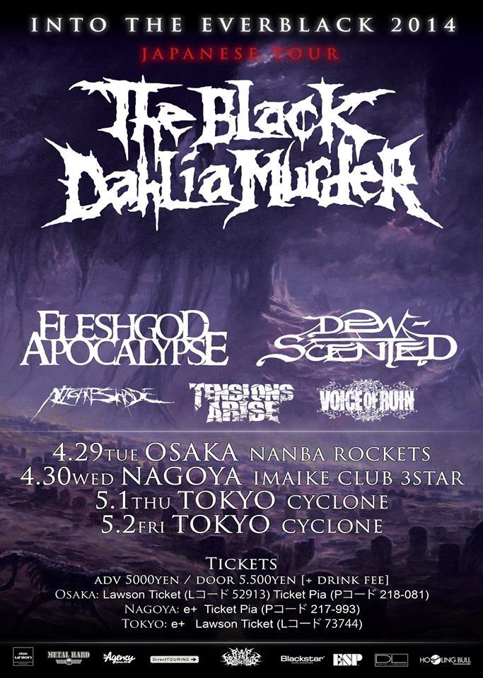 D-S Japan tour 2014